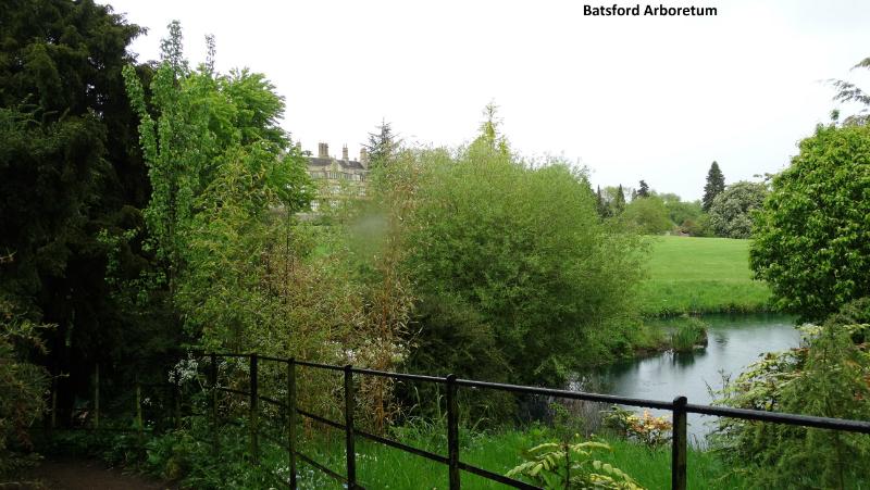 batsford-arboretum-6_0