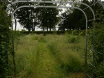 Rutland Gardens 2013