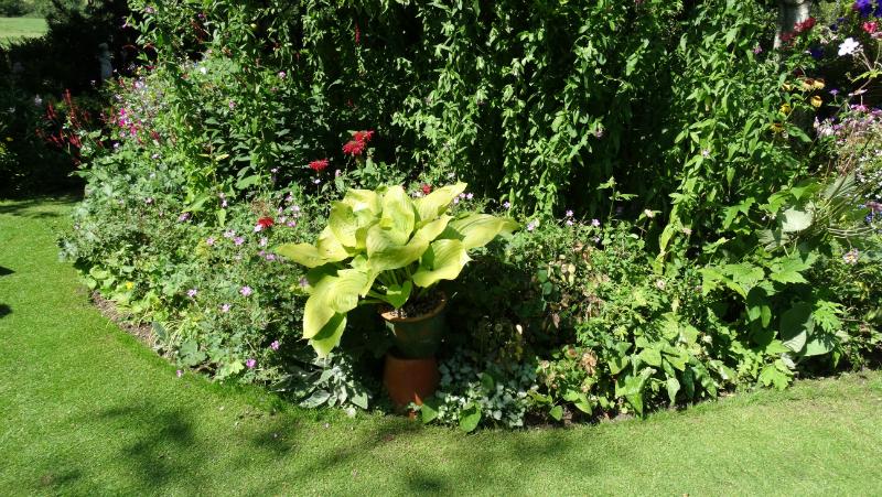 co-durham-helmingham-gardens-051