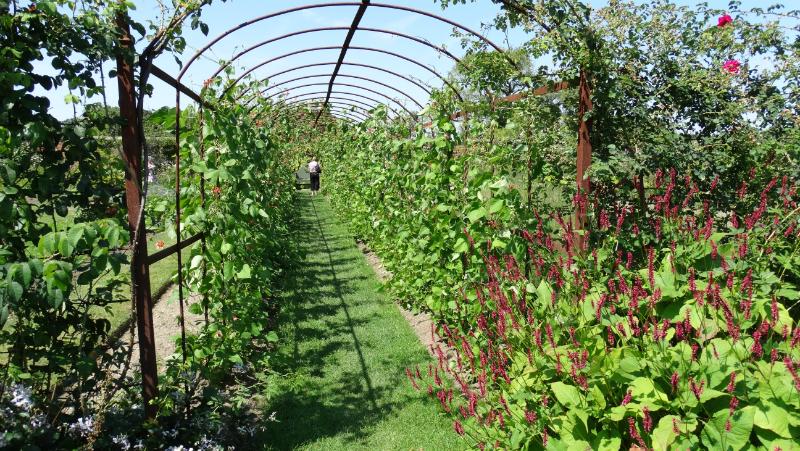 co-durham-helmingham-gardens-061