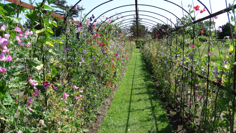 co-durham-helmingham-gardens-068