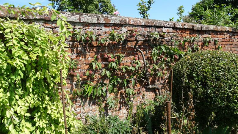 co-durham-helmingham-gardens-070