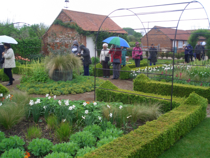 ulting-wick-april-2014-plant-sale-may-2014-005