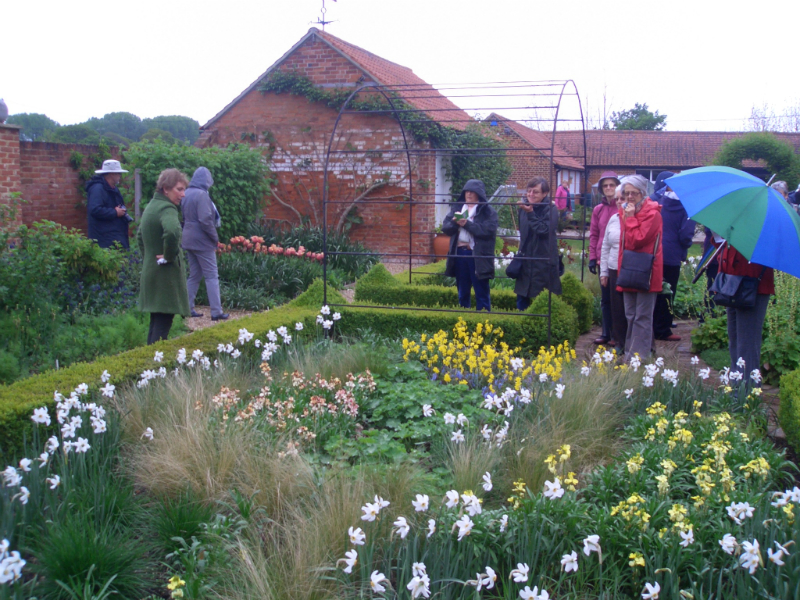 ulting-wick-april-2014-plant-sale-may-2014-007